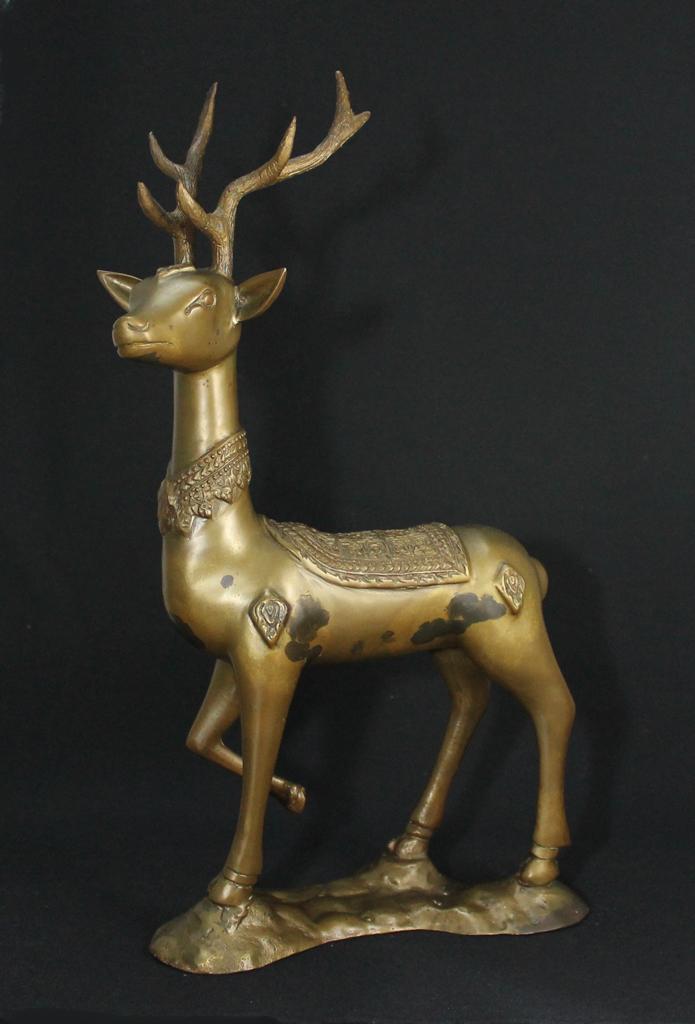 Thai_deer